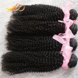 ベトナムのバージンの毛のねじれたカール自然なカラー高品質の毛の織り方