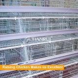 Quente vendendo um tipo gaiola de galinha automática para galinhas poedeiras em Nigéria
