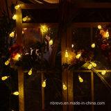 Luz solar da corda de 10 diodos emissores de luz para a decoração do jardim (RS1008)