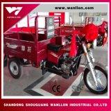 Motociclo del triciclo della rotella del motore raffreddato aria 3