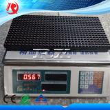 Tela de indicador vermelha do diodo emissor de luz do passo do pixel do módulo 32X16 do diodo emissor de luz P10 da única cor de Rx