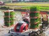 Alta velocidad de 6 hileras de arroz Transplanter (2GZ-6DK)