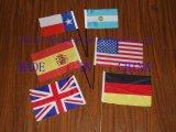 Стороны флаги