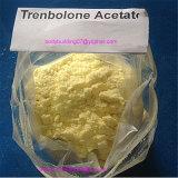 Trenbolone 아세테이트 근육 건물 스테로이드 Parabolan CAS: 10161-34-9
