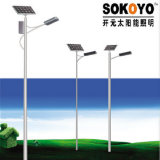 CE Approved LED Solar Street Lights with 6m Pole-Village Project Cases