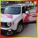Автомобиль виниловая пленка для обвязки сеткой (TJ-XZ-4)
