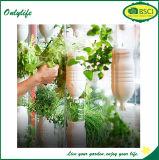 La piantatrice di verdure del fiore del tessuto della iuta del giardino di Onlylife coltiva il sacchetto