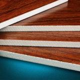 Цветастый лист панели доски PVC