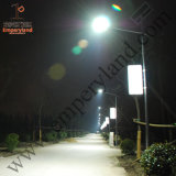 30W Special Price IP68 Listed Solar Street Lighting