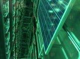 UV het Verouderen Meetapparaat voor PV Module