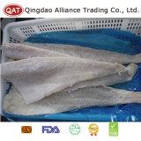 Filet de poissons Salted gelé avec de bonne qualité