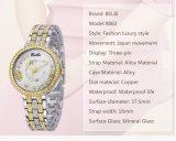 Steun T/T, L/C, de Western Union, Paypal, Alipay van de Horloges van de Juwelen van Belbi van Dame Wristwatch Merknaam van de Legering van het Ontwerp van de Wijzerplaat van de Diamant van de Bloem van de manier de Waterdichte Al Welcom