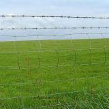 농장 담 또는 최신 판매 농장 Fence/PVC 입히는 농장 담 /High 질 농장 담 (SH12)