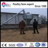 Горячая продажа птицы фермерский дом дизайн Автоматическое оборудование для бройлеров и заводчиков