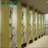 Compartimento do chuveiro do projeto moderno para a venda