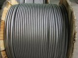 ACSR Alambre para conductores de tendido eléctrico de cable de Líneas Aéreas