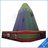 옥외 운동 튼튼한 아이 팽창식 상승 벽