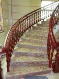 Punti di marmo bianchi della pietra della scala e scale a spirale pretagliate delle colonne montanti