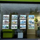 Collegare acrilico del cavo delle caselle chiare della visualizzazione del blocco per grafici del manifesto del LED che appende per l'agente immobiliare Windows
