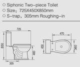 Disabled S-Trap를 위한 Siphonic Jet를 가진 2 조각 Toilet Bowl
