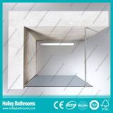 Estilo europeu Walk-in Door Vidro colorido tela de chuveiro simples (SE716K)