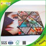 Qualität kundenspezifische Offsetdrucken-farbenreiche Broschüren und Broschüre