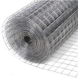 China Electro Galvanized Welded Wire Mesh Panel Hot Sale
