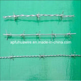 ステンレス鋼の有刺鉄線(AISI 304)