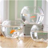 円形の小型アクアリウムの魚ボールのガラス魚飼育用の水槽