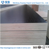 Solid Color/Wood Grain Melamine Paper Faced Plywood