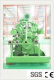 50-60Hz de biogas de 300kw generador fabricante de China