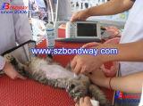 Scanner de ultra-som portáteis para uso veterinário, Veterinaire Echographe, o ECHO veterinário da Máquina
