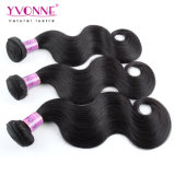 Virgin Hair Brazilian Body Wave with Closure