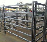 Rete fissa ovale del comitato del bestiame della tubazione