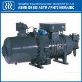 Compressor de gás do ar de parafuso industrial