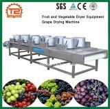 Obst- und GemüseTrockner-Geräten-Trauben-trocknende Maschine