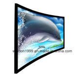 изогнутые 3D экраны проекции, изогнутый экран