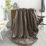 夏のホームのためのチョコレートカラー絹毛布