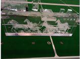 كبيرة داخليّة [3د] صورة بلّوريّة/بلّوريّة هبات/ليزر [إنغرفينغ مشن] مع سرعة عال