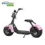 EEC&Coc 70のKm範囲の脂肪質のタイヤ電気都市ココヤシのスクーター