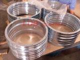 Vier-Punkt Nicht-Gang Einzeln-Reihe Kontakt-Kugel-Herumdrehenpeilung 90-1b13-0220-0318