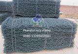 PVC fornitore rivestito del materasso di Gabion di verde di muschio, di Gabionbox & di Gabion
