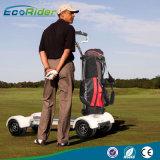 Barato 20.8ah 60V 1000W Golf Board utilizados carrinhos de golfe eléctrico