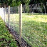 動物に囲うことのための草原のスパンのヒンジ接合箇所の農場の塀