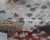 網戸のための工場6mm白い曇らされたガラス
