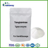 Fabrik-Zubehör MikrobenTransglutaminase Tgase Enzym-Lebensmittel-Zusatzstoff