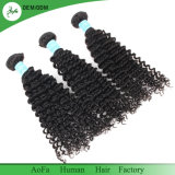 もつれの自由で加工されていないバージンの人間の毛髪の最上質のインドの巻き毛