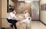 Mobilia professionale della cucina del fornitore dell'armadio da cucina