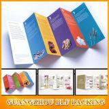 Modèles de brochure d'aperçu gratuit