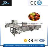 高品質の自動果物と野菜のクリーニング機械